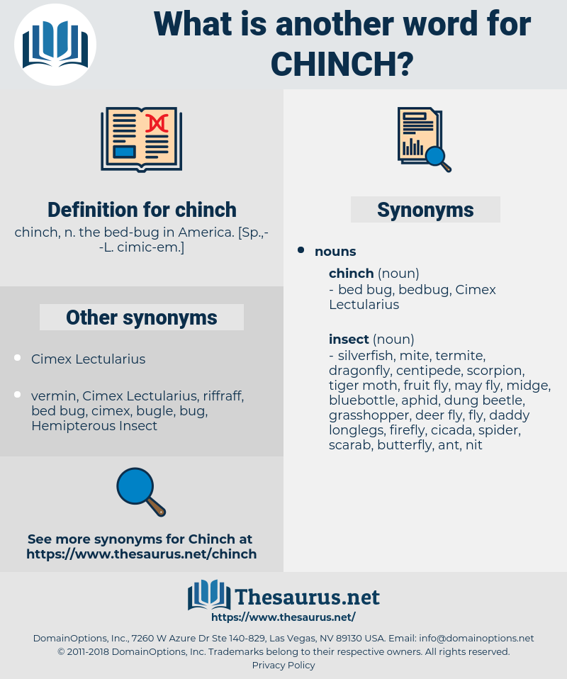 chinch, synonym chinch, another word for chinch, words like chinch, thesaurus chinch