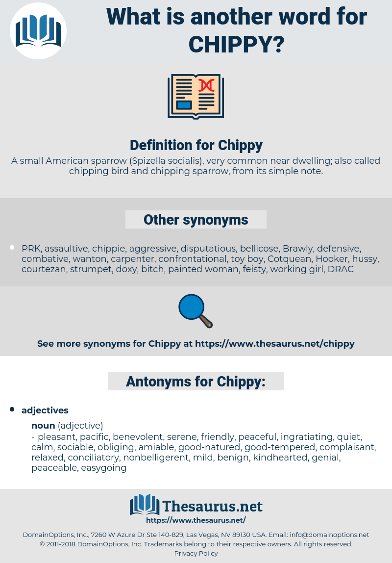 Chippy, synonym Chippy, another word for Chippy, words like Chippy, thesaurus Chippy