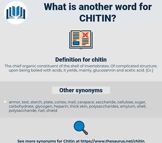chitin, synonym chitin, another word for chitin, words like chitin, thesaurus chitin