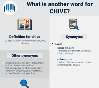 chive, synonym chive, another word for chive, words like chive, thesaurus chive