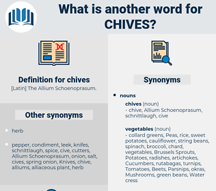 chives, synonym chives, another word for chives, words like chives, thesaurus chives