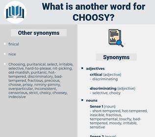 choosy, synonym choosy, another word for choosy, words like choosy, thesaurus choosy