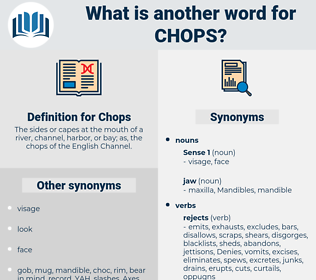 Chops, synonym Chops, another word for Chops, words like Chops, thesaurus Chops
