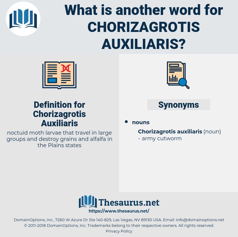 Chorizagrotis Auxiliaris, synonym Chorizagrotis Auxiliaris, another word for Chorizagrotis Auxiliaris, words like Chorizagrotis Auxiliaris, thesaurus Chorizagrotis Auxiliaris