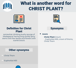 Christ Plant, synonym Christ Plant, another word for Christ Plant, words like Christ Plant, thesaurus Christ Plant