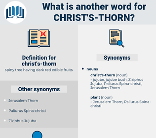 christ's-thorn, synonym christ's-thorn, another word for christ's-thorn, words like christ's-thorn, thesaurus christ's-thorn