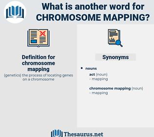 chromosome mapping, synonym chromosome mapping, another word for chromosome mapping, words like chromosome mapping, thesaurus chromosome mapping