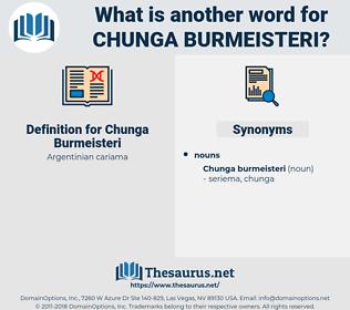 Chunga Burmeisteri, synonym Chunga Burmeisteri, another word for Chunga Burmeisteri, words like Chunga Burmeisteri, thesaurus Chunga Burmeisteri