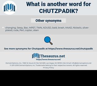 chutzpadik, synonym chutzpadik, another word for chutzpadik, words like chutzpadik, thesaurus chutzpadik