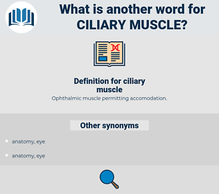 ciliary muscle, synonym ciliary muscle, another word for ciliary muscle, words like ciliary muscle, thesaurus ciliary muscle