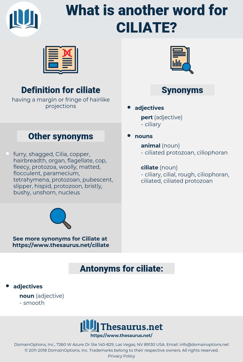 ciliate, synonym ciliate, another word for ciliate, words like ciliate, thesaurus ciliate