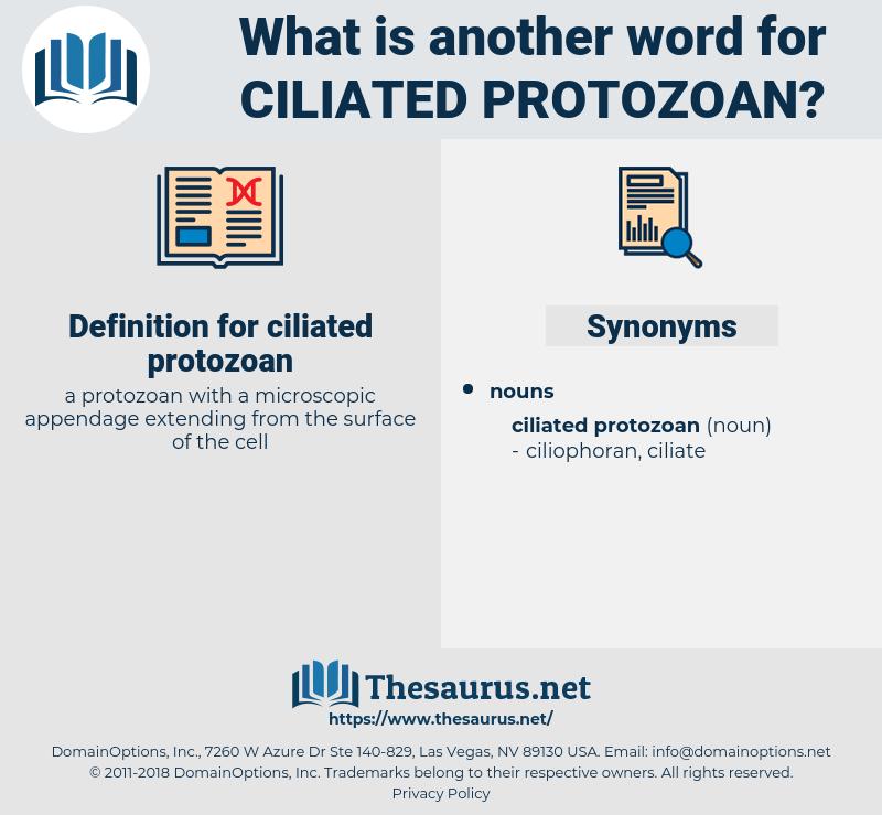 ciliated protozoan, synonym ciliated protozoan, another word for ciliated protozoan, words like ciliated protozoan, thesaurus ciliated protozoan
