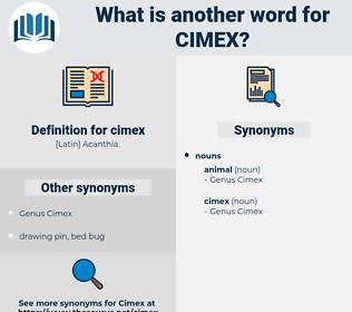 cimex, synonym cimex, another word for cimex, words like cimex, thesaurus cimex