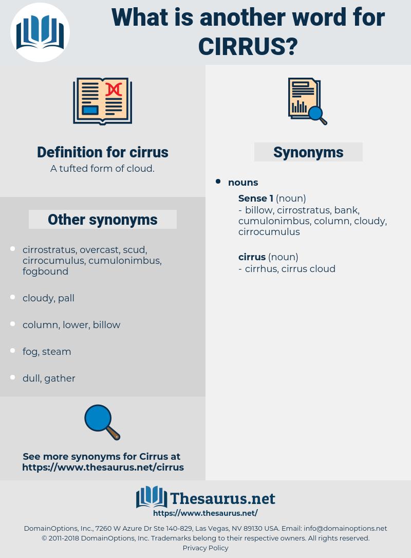 cirrus, synonym cirrus, another word for cirrus, words like cirrus, thesaurus cirrus