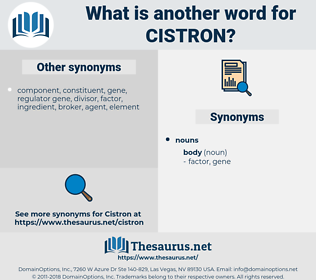 cistron, synonym cistron, another word for cistron, words like cistron, thesaurus cistron