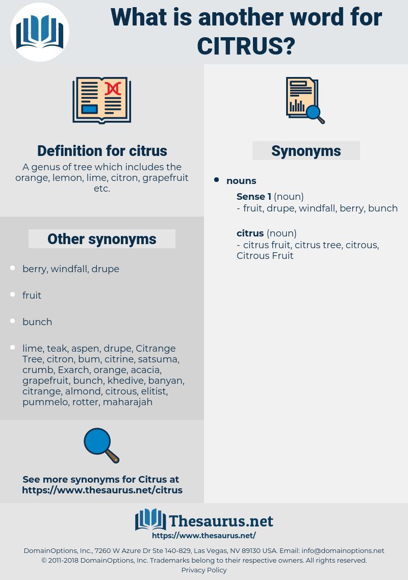 citrus, synonym citrus, another word for citrus, words like citrus, thesaurus citrus