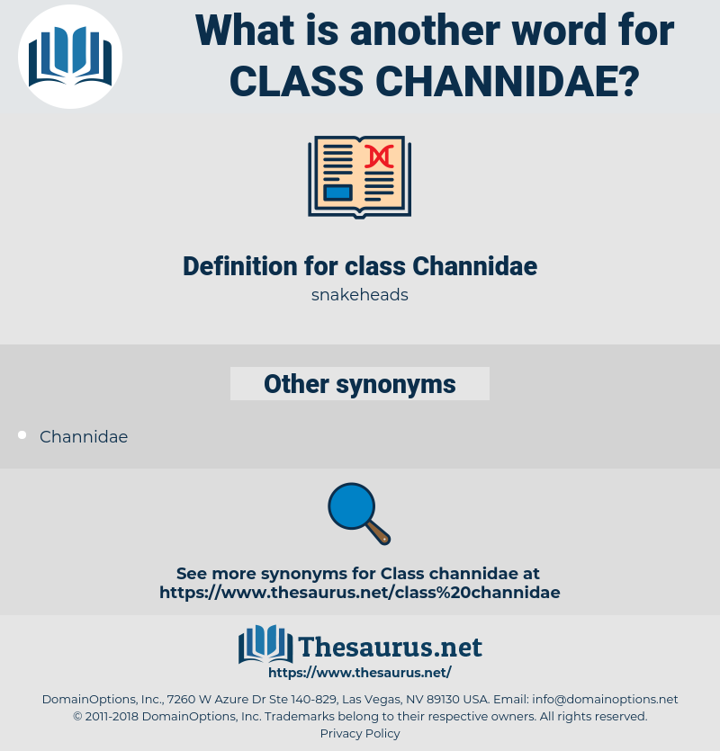 class Channidae, synonym class Channidae, another word for class Channidae, words like class Channidae, thesaurus class Channidae