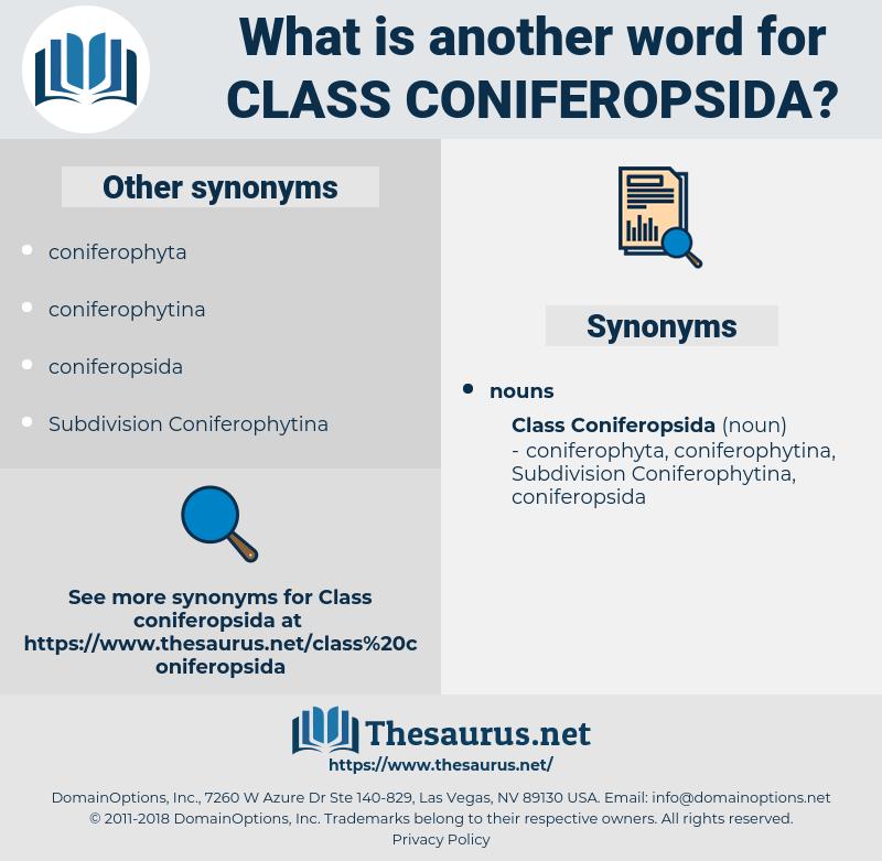 Class Coniferopsida, synonym Class Coniferopsida, another word for Class Coniferopsida, words like Class Coniferopsida, thesaurus Class Coniferopsida