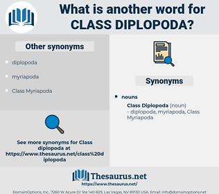 Class Diplopoda, synonym Class Diplopoda, another word for Class Diplopoda, words like Class Diplopoda, thesaurus Class Diplopoda