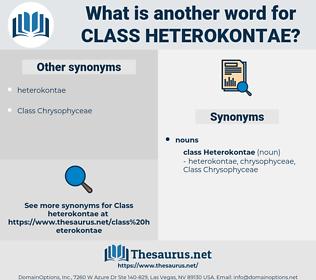 Class Heterokontae, synonym Class Heterokontae, another word for Class Heterokontae, words like Class Heterokontae, thesaurus Class Heterokontae