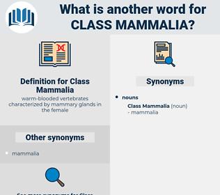 Class Mammalia, synonym Class Mammalia, another word for Class Mammalia, words like Class Mammalia, thesaurus Class Mammalia