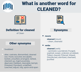 cleaned, synonym cleaned, another word for cleaned, words like cleaned, thesaurus cleaned