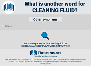 cleaning fluid, synonym cleaning fluid, another word for cleaning fluid, words like cleaning fluid, thesaurus cleaning fluid