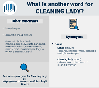 cleaning lady, synonym cleaning lady, another word for cleaning lady, words like cleaning lady, thesaurus cleaning lady