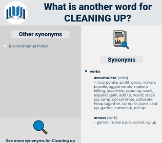 cleaning up, synonym cleaning up, another word for cleaning up, words like cleaning up, thesaurus cleaning up