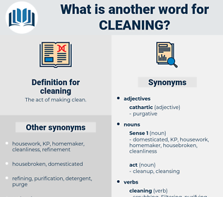 cleaning, synonym cleaning, another word for cleaning, words like cleaning, thesaurus cleaning