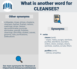 cleanses, synonym cleanses, another word for cleanses, words like cleanses, thesaurus cleanses