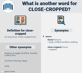 close-cropped, synonym close-cropped, another word for close-cropped, words like close-cropped, thesaurus close-cropped