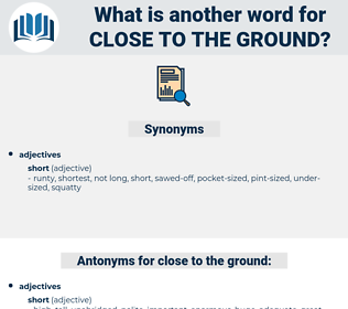 close to the ground, synonym close to the ground, another word for close to the ground, words like close to the ground, thesaurus close to the ground