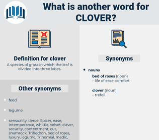 clover, synonym clover, another word for clover, words like clover, thesaurus clover