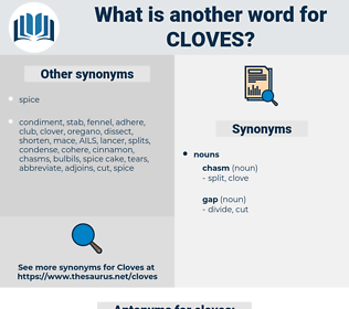cloves, synonym cloves, another word for cloves, words like cloves, thesaurus cloves