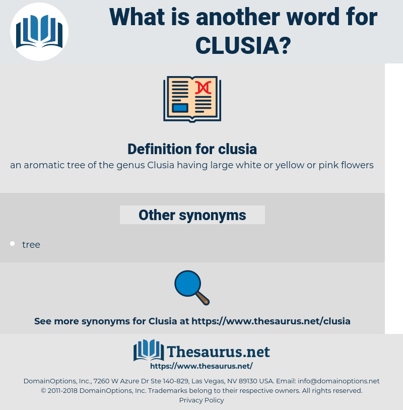 clusia, synonym clusia, another word for clusia, words like clusia, thesaurus clusia