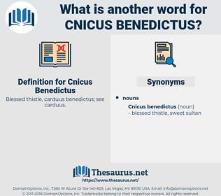 Cnicus Benedictus, synonym Cnicus Benedictus, another word for Cnicus Benedictus, words like Cnicus Benedictus, thesaurus Cnicus Benedictus