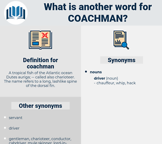 coachman, synonym coachman, another word for coachman, words like coachman, thesaurus coachman