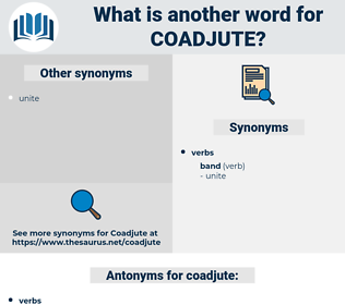 coadjute, synonym coadjute, another word for coadjute, words like coadjute, thesaurus coadjute