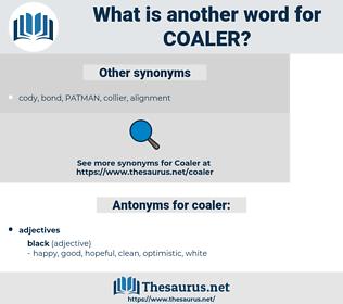 coaler, synonym coaler, another word for coaler, words like coaler, thesaurus coaler