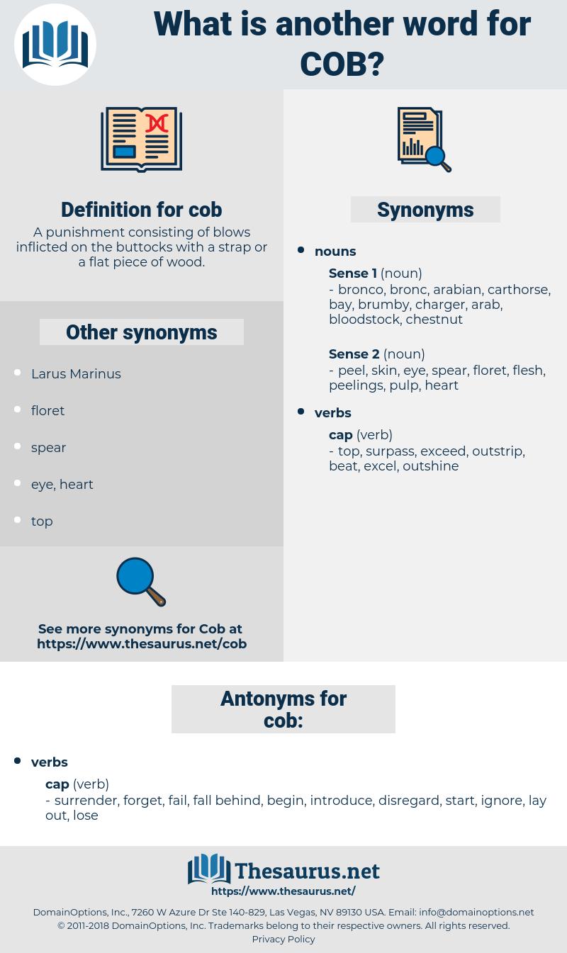cob, synonym cob, another word for cob, words like cob, thesaurus cob