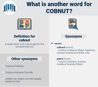 cobnut, synonym cobnut, another word for cobnut, words like cobnut, thesaurus cobnut
