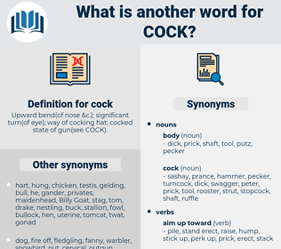 cock, synonym cock, another word for cock, words like cock, thesaurus cock