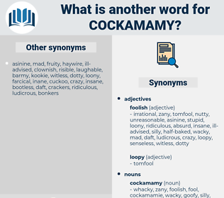 cockamamy, synonym cockamamy, another word for cockamamy, words like cockamamy, thesaurus cockamamy