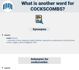 cockscombs, synonym cockscombs, another word for cockscombs, words like cockscombs, thesaurus cockscombs