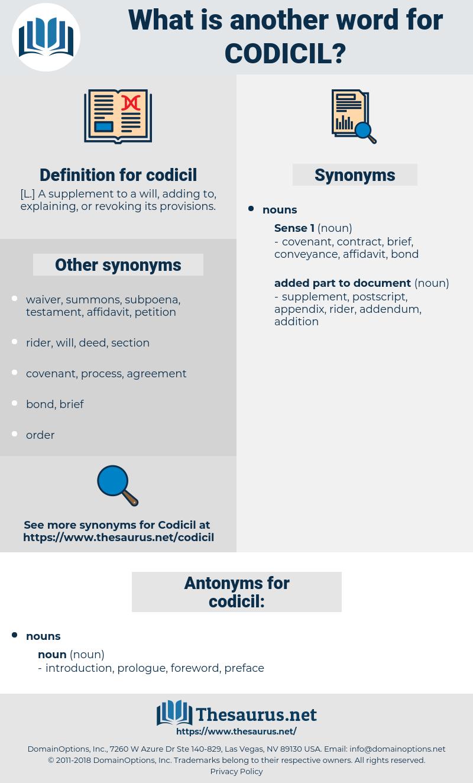 codicil, synonym codicil, another word for codicil, words like codicil, thesaurus codicil