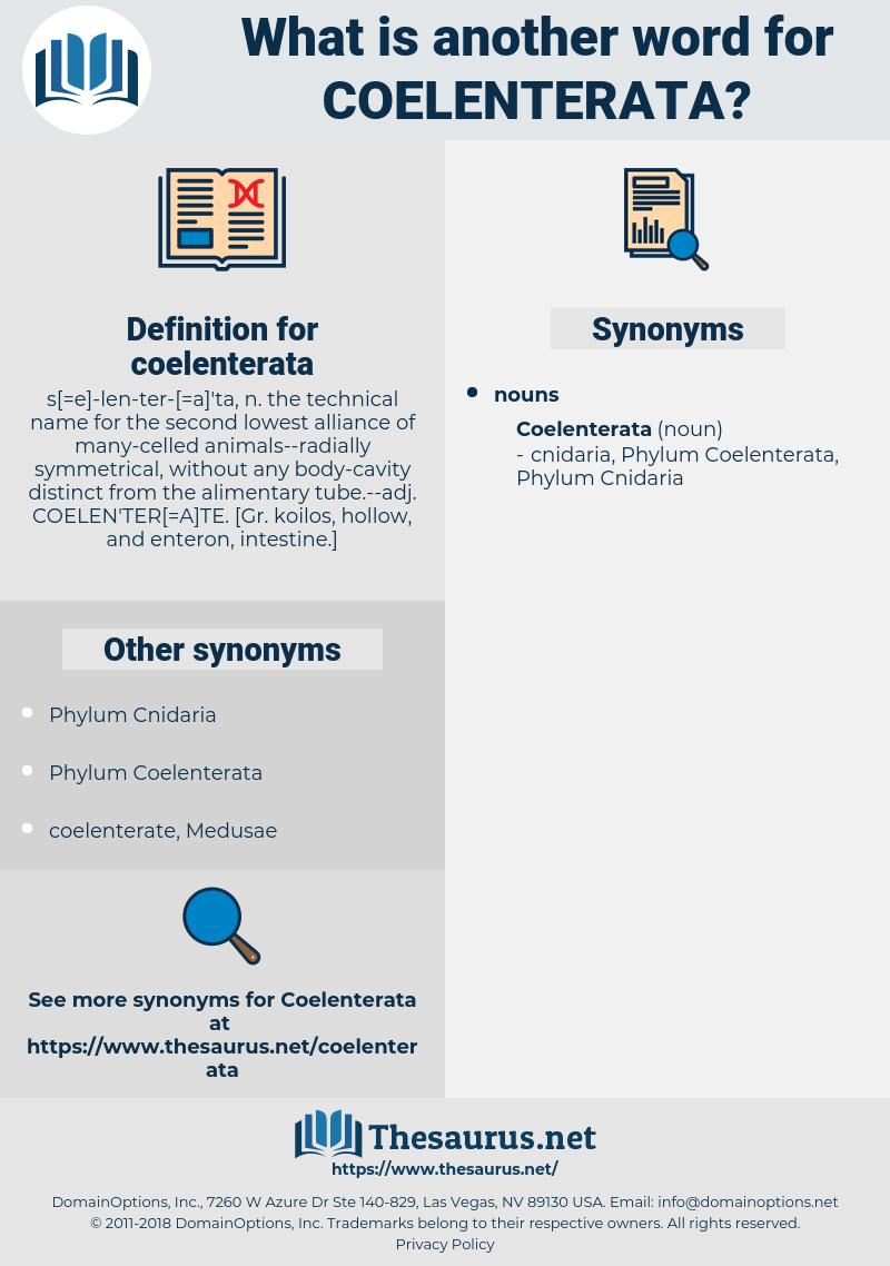 coelenterata, synonym coelenterata, another word for coelenterata, words like coelenterata, thesaurus coelenterata
