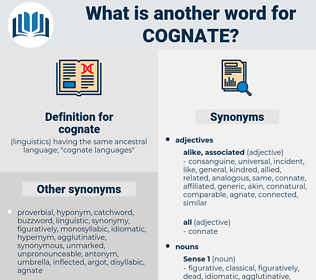 cognate, synonym cognate, another word for cognate, words like cognate, thesaurus cognate