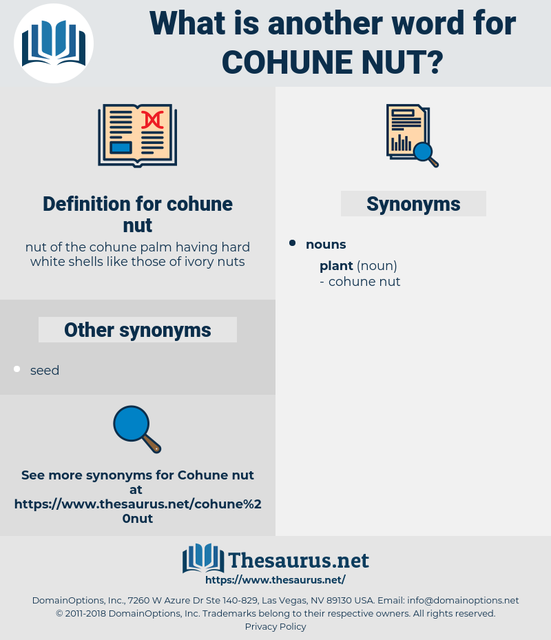 cohune nut, synonym cohune nut, another word for cohune nut, words like cohune nut, thesaurus cohune nut
