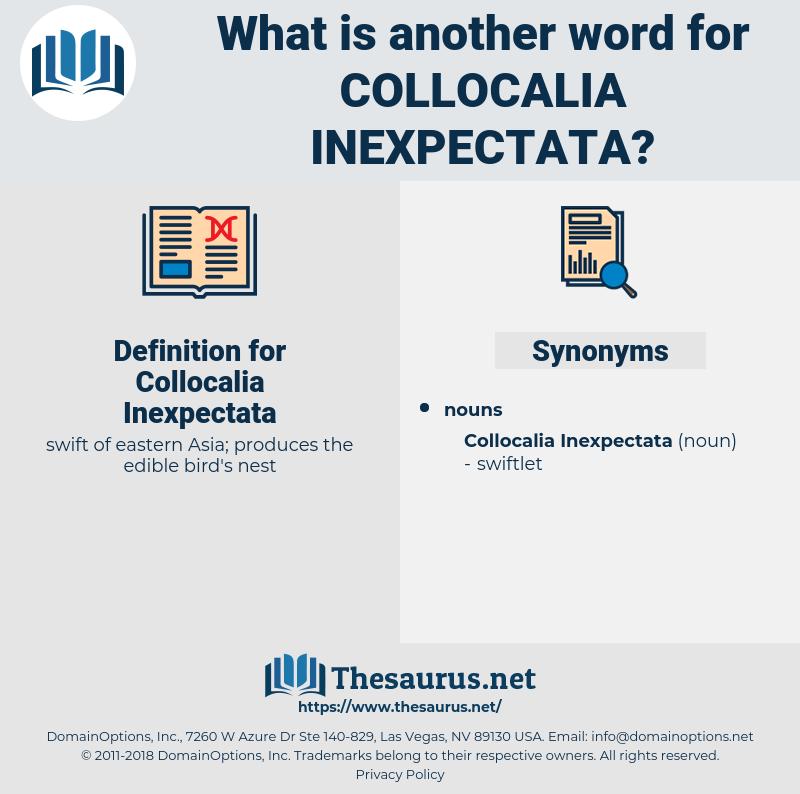 Collocalia Inexpectata, synonym Collocalia Inexpectata, another word for Collocalia Inexpectata, words like Collocalia Inexpectata, thesaurus Collocalia Inexpectata